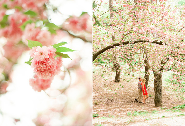 Central Park Engagement pictures in the spring